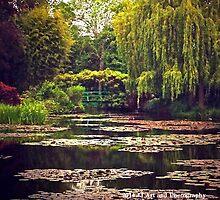 France - Monet's Garden by jezebel521