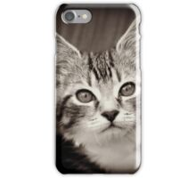 Frodo Kitten iPhone Case/Skin