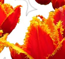 Fire flowers Sticker