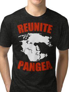 Reunite Pangea Funny Geek Nerd Tri-blend T-Shirt