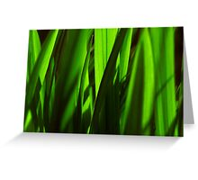 exotic grasses - green Greeting Card