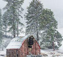 Snow Storm Vortex by Jim Stiles