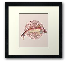 Mulletfish Mandala Framed Print