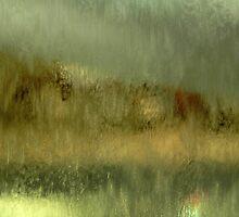 Belrose waterfall 2 by Antoine de Paauw