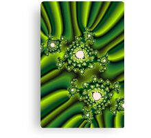 Broccoli Medley Canvas Print