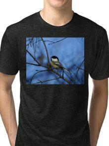 Chick-A Delight. Tri-blend T-Shirt