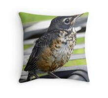 New Baby Robin Throw Pillow