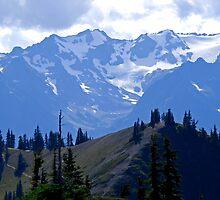 the ridge trail by okasan
