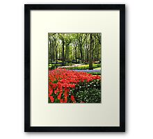 A Kaleidoscope of Colours - Keukenhof Gardens in Spring Framed Print