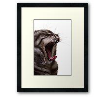 Yawn, Growl! Framed Print