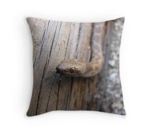 Night Snake Throw Pillow