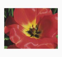 Stunning Scarlet Tulip Supermacro Baby Tee