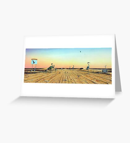 Birdsville Track Greeting Card
