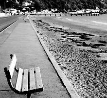 Seatoun peace by Lisa Wilson