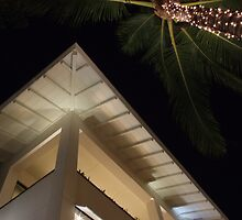 fairy lights and eaves by LenitaB