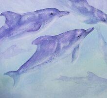 Dolphin Play by paul boast