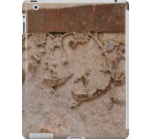 Jahangir's Bath iPad Case/Skin
