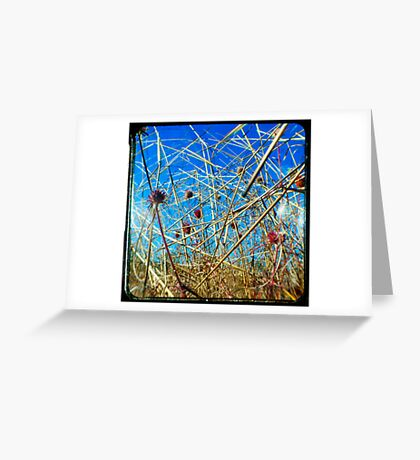Red in the Blue Greeting Card