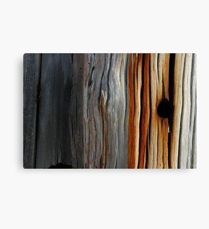 Tidal colours Canvas Print