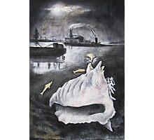 Moonlight Shell Photographic Print