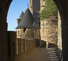 Carcassonne castle by Mikhail Lavrenov