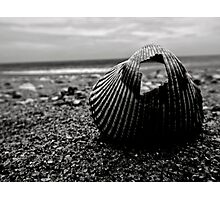 Through The Shell Photographic Print