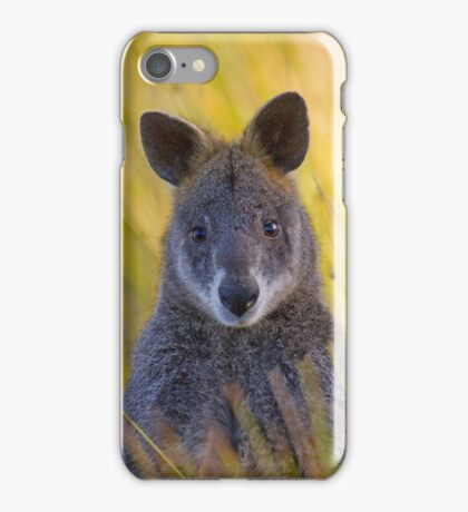 Lonely Swamp Wallaby 1 iPhone Case/Skin