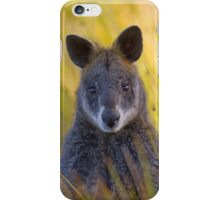 Swamp Wallaby 2 iPhone Case/Skin