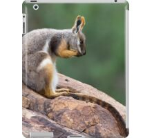 Yellow-footed Rock Wallaby 1 iPad Case/Skin