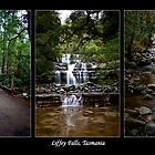 Triptych - Liffey Falls by Martin Pot