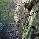 Curved Convict Built Wall - Great North Road by Bev Woodman