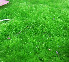 Moss Carpet by Jen7