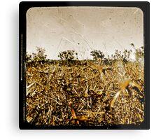 Wild Fields Metal Print