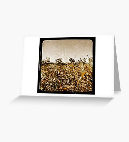 Wild Fields Greeting Card