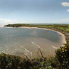 Samsons Cove by John Kiely