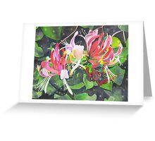Honeysuckle in my Garden 3 Greeting Card