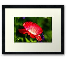 Now That's Red Framed Print