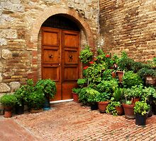 San Gimignano courtyard by SylviaCook