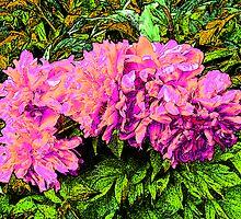Petunias by Tymlaird