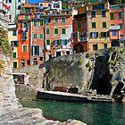 Riomaggiore by SylviaCook