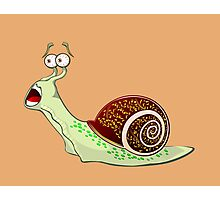 Scared Snail Photographic Print