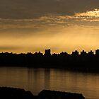 Enlightened City by Jay Mody