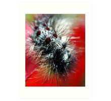 Caterpillar  Macro Art Print