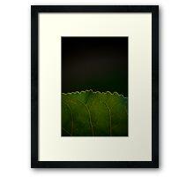 Green Border Framed Print