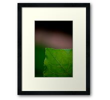 Green Corner Framed Print