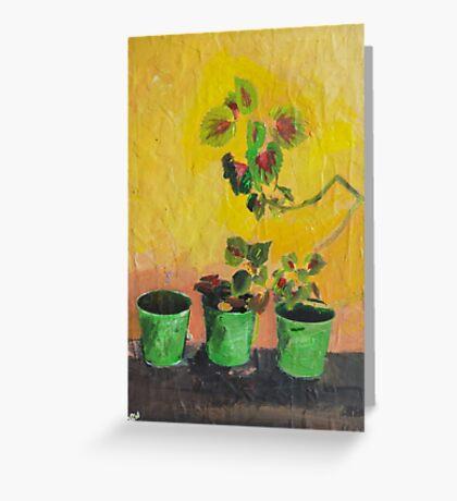 Greece, Flowers Greeting Card
