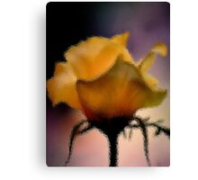 GLASS IMAGE; THE LIME ROSE Canvas Print