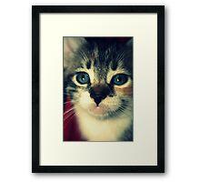 Galinda Framed Print