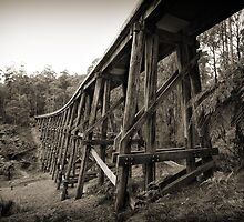Noojee Trestle Bridge by Jim Worrall