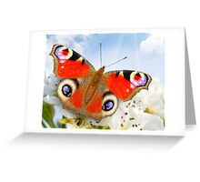 Butterfly! SALE! Greeting Card